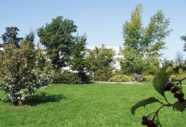 Parkanlage direkt davor: 2-Raum-Wohnung Hanoier Straße 50